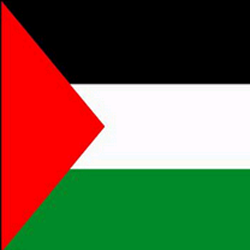 Palestinian Territory Flag Icon