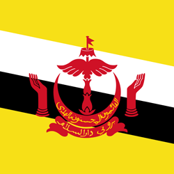 Brunei Darussalam Flag Icon