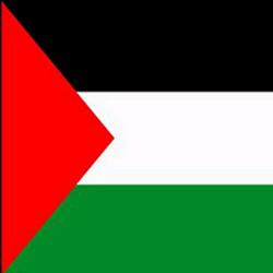 Palestinian Territory Flag